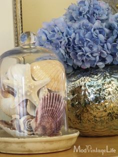 I just love this! I had a cloche and shells so copied this one. Who needs to be at the beach to love shells?
