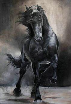 Friesian_C. Fitzgerald Friesian_C. Most Beautiful Horses, Pretty Horses, Horse Love, Animals Beautiful, Horse Drawings, Animal Drawings, Horse Wallpaper, Horse Artwork, Black Horses