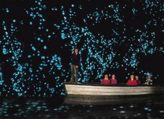 Waitomo Glow Worm Caves, (North Island) New Zealand ~ This is one of the most extraordinary experiences; raft through an underground cavern filled with thousands of glow worms.  Mystical, enchanting, not to be missed if you visit New Zealand.