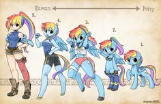 Types- RainbowDash by shepherd0821.deviantart.com on @deviantART