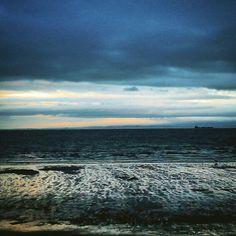 A Staffy running, Kirkcaldy beach.