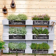 Mini-Gärten auf dem Balkon: So einfach geht's - home/haus Mini jardins sur le balcon: c'est aussi simple que cela house Potager Palettes, Herb Garden Design, Garden Types, Design Jardin, Easy Garden, Garden Path, Herb Garden Pallet, Palette Herb Garden, Diy Herb Garden