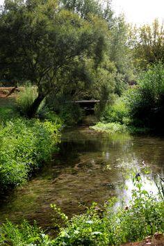 #Vivonne #Villageetape #ruisseau #forêt #calme #Poitoucharentes #Vienne