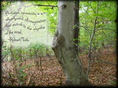 Three of my favorite things;  Trees  beautiful quotes  photo manipulation