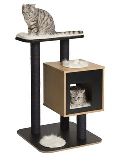 Astonishing Design Ideas Of Unique Cat Trees With Black Brown Colors Cat Housing And Black Perch Also Scratching Post As Well As Tree Scratching Post Also Best Furniture For Cats of Marvellous Design Ideas Of Unique Cat Trees and Interior Cat Furniture Modern, Make Your Own Cat Condo, Cool Cat Towers - Home Goid
