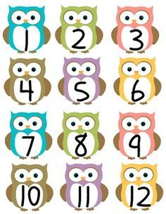 Cute Owl Theme Classroom Calendar Numbers by KinderKuties Owl Classroom Decor, Polka Dot Classroom, Classroom Calendar, Classroom Jobs, Classroom Teacher, Kindergarten Classroom, Preschool Jobs, Calendar Numbers, Montessori Activities