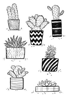"SILVIA REGINATO ILLUSTRATIONS — ""Succulents"" Buy the prints here"