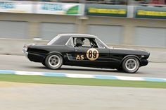 1966 Shelby Mustang Hertz GT350 Rent-A-Racer
