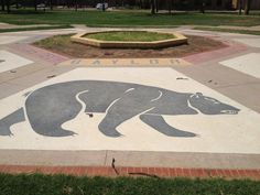 #Baylor has a place on the Texas Tech campus? #SicEm (photo via Williermo77 on Twitter) #BaylorEverywhere