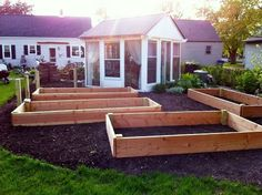 Raised beds...how many