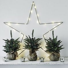 Star Fairy Lights | The White Company