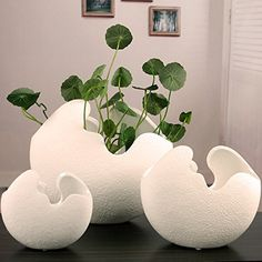 egg shell shaped flower pot gifts for parents