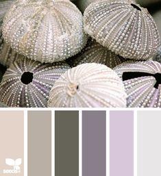 Coastal and Beach Decor: Coastal Decor Color Palette - Urchin Tones Colour Schemes, Color Combos, Color Patterns, Color Charts, Color Lila, Design Seeds, Reno, Color Swatches, Color Pallets