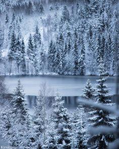 Winter can be so pretty❄❤