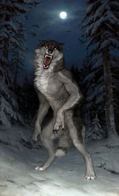 This piece was painted by Atenebris. While it may depict a werewolf, it is very similar to descriptions surrounding dogmen. Arte Furry, Furry Art, Fantasy Kunst, Fantasy Art, Werewolf Art, Vampires And Werewolves, Creatures Of The Night, Creature Design, Mythical Creatures