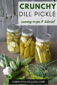 If you like a crunchy, salty, slightly spicy, delicious dill pickle and like to can, this post is for you! This dill pickles recipe canning tutorial was handed down by my grandmother {who has been making them for as long as I can remember} and has ruined store bought pickles for me forever. Learn how to can crunchy pickles with this recipe. Polish Pickle Soup Recipe, Crunchy Dill Pickle Recipe, Canning Dill Pickles, Dill Pickle Soup, Salsa Canning Recipes, The Recipe Rebel, Canning Granny, Creamy Potato Soup, Smoking Recipes