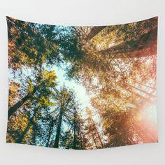 "WALL TAPESTRY/ LARGE: 88"" X 104""  Elena Kulikova (elenakulikova) California Redwoods Sun-rays and Sky by Elena Kulikova $79.00"