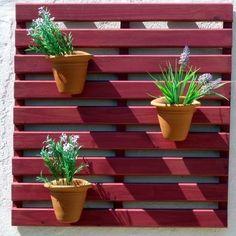 Painel Framboesa da loja Ecológica no Elo7 para suas plantas mais queridas. Que…