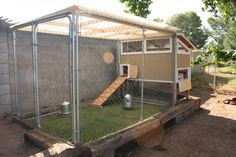 small coop with attached dog pen for a run