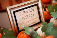 Pumpkin Wedding Inspiration for fall. Pumpkin patch sign with pumpkin escort cards!  #pumpkin #fall #wedding #weddingdecor