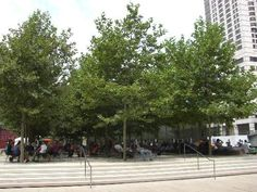 Fabulous #groundchat this Friday, Jan 23 at 2pm ET! @rethinktrees is chatting about urban street trees & Silva Cells. It's all about making cities a more liveable place!   Lincoln Center Urban Trees (bosque type plaza) using DeepRoot's Silva Cell system.