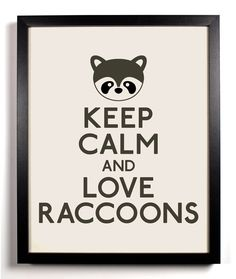 "I haaattte these ""Keep Calm…"" posters. But dammit do I love raccoons."