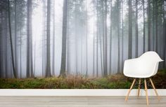 hinterland-haze-forest-mural-room