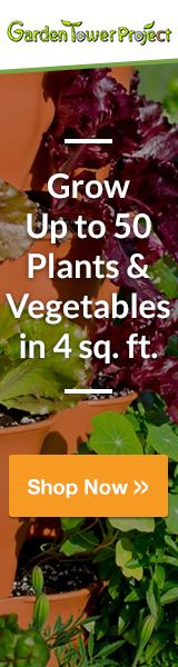 Grow 50 Plants & Vegetables in Four Sq. Compost & Garden in One — Nutrient Rich Gardening Faster Growth than Any Other Garden. Minimal Upkeep & No Weeding Required — Rotates for Easy Accessibility. Make Beer At Home, How To Make Beer, Brewing Recipes, Beer Recipes, Yeast Packet, Snow In Summer, Rock Garden Plants, Small Shrubs, Soil Improvement