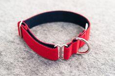 Collier pour chien rouge/bleu 100% coton – Hariet & Rosie Vackertass