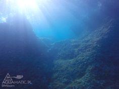 http://www.divingpag.com/pl//pl/ Takie widoki tylko na Pagu. Kolejne nurkowanie zaliczone :)