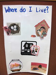 We all can live in different types of homes - can you help the lost people and animals to find their way home? Getting to Know You unit