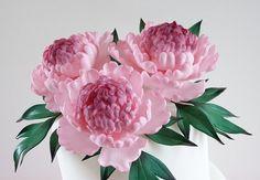 Edible Sugar Flowers  3 Extra Large Peony 5 by AlegraSugarFlowers
