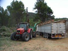 El Plan especial para la biomasa forestal contempla actuaciones programadas durante cuatro anualidades en 5.179,9 hectáreas de montes públicos de la Región, concretamente en Sierra Espuñ ...