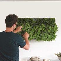 D&M Karoo plantenbak verticaal. Maak binnen of buiten je eigen groene muur of eetbare wand met dit verticale tuin systeem. Per module kunnen er 9 planten in worden geplant. Verticale tuin, groene muur, eetbare wand, plantentoren.