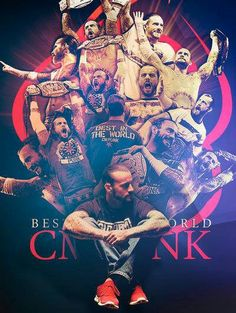 The Hall of Fame of CM PUNK.