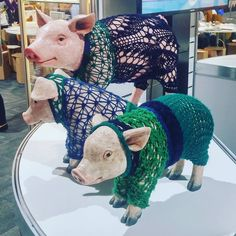 #royalmelbourneshow #yarnbombing #porkers #pigs #lacy #fancy
