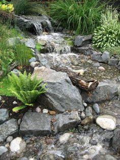 pondless stream www.nwbloom.com