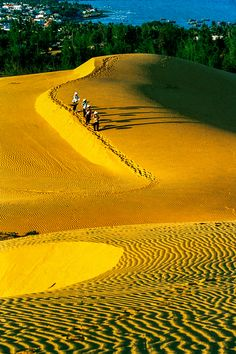 sand hills by huuthanh nguyen near city in Vietnam Laos, Beautiful World, Beautiful Places, Places To Travel, Places To Visit, Nature Photography, Travel Photography, Beautiful Vietnam, World Pictures