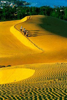 Golden sand dunes of Vietnam