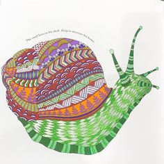 I think snails are just so cute!  #milliemarotta #animalkingdom #snails #adultcoloring #adultcolouring #adultcoloringbook #coloring #colouring #coloringbook #mySTAEDTLER #gellyroll