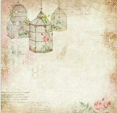 Bird Cages on mixed media