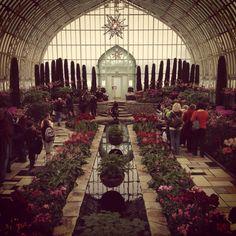 Como Conservatory, St. Paul