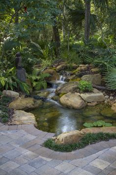 Shady Florida Pond and Waterfall