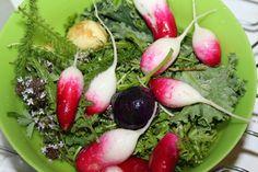 Godt og Sunt: Ukemeny 21/2016 Salatdager