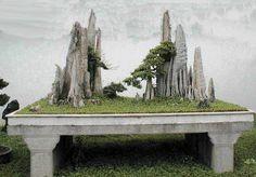 Projetos de Rochas para bonsai - Pesquisa Google