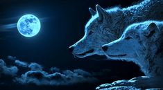 White Wolf : Rare Blue Moon Rises Tonight: 5 Amazing Facts