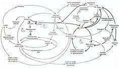 Causal loop diagram - Wikipedia, the free encyclopedia
