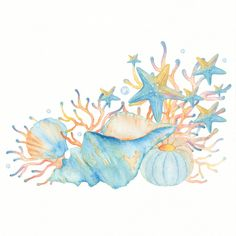 Watercolor Sea, Watercolor Flowers, Cute Illustration, Graphic Design Illustration, Sea Clipart, Owl Clip Art, Mermaid Drawings, Environment Concept Art, Sea Shells