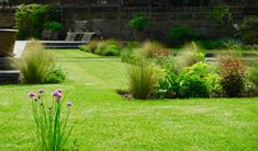 Green sward with herbaceous planting and ornamental grasses, designed by Carolyn Grohmann