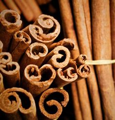 Olio essenziale di cannella: proprietà utilizzi e controindicazioni di un rimedio naturale caldo e profumato